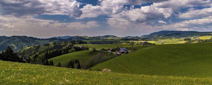 Aussicht vom vorderen Hochwald  (c) Hochschwarzwald Tourismus GmbH