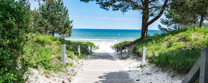 Binz Strandzugang (c) Adobe Stock Kevin Mierlita