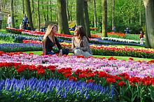 Park (c) Keukenhof