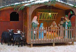 Weihnachten Krippe (c) Peter Eckert